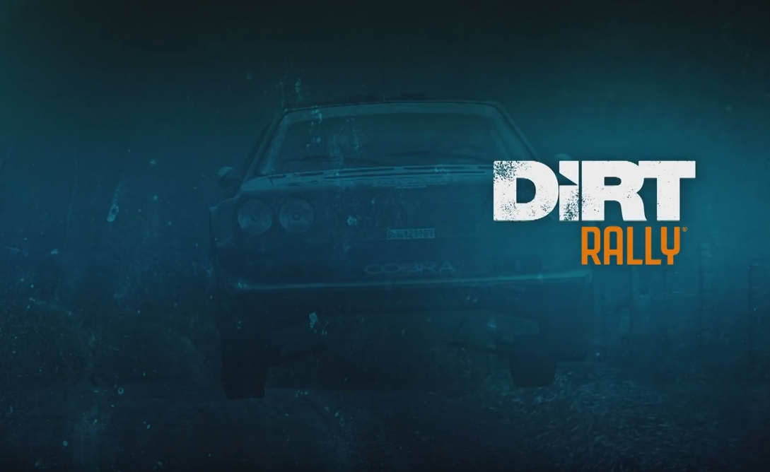 Dirt Rally Multiplayer