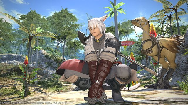 A fighter and chocobo in Final Fantasy 14